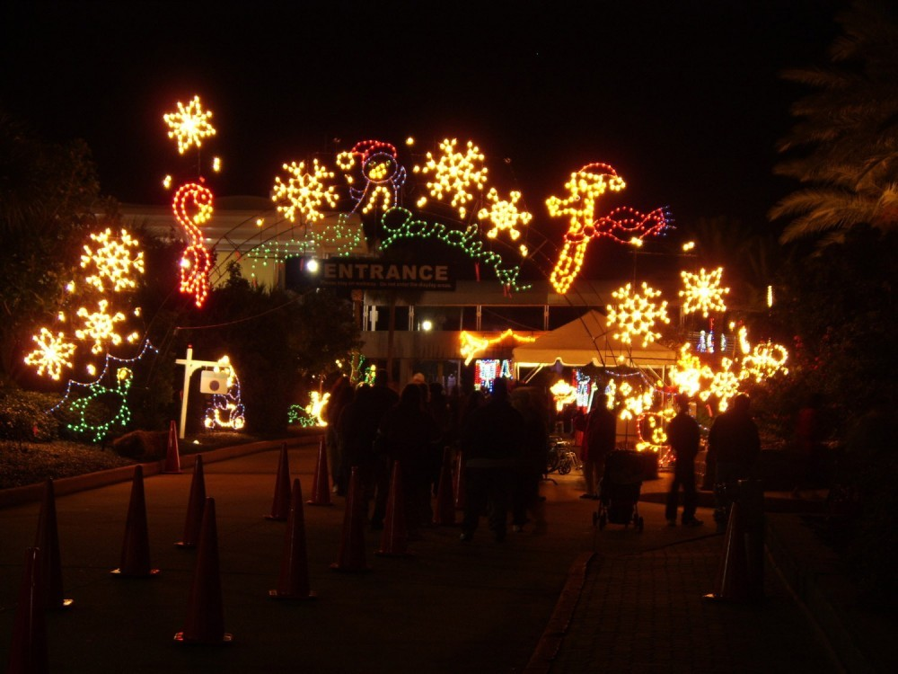 Moody Gardens Festival Of Lights 2014 Search Results