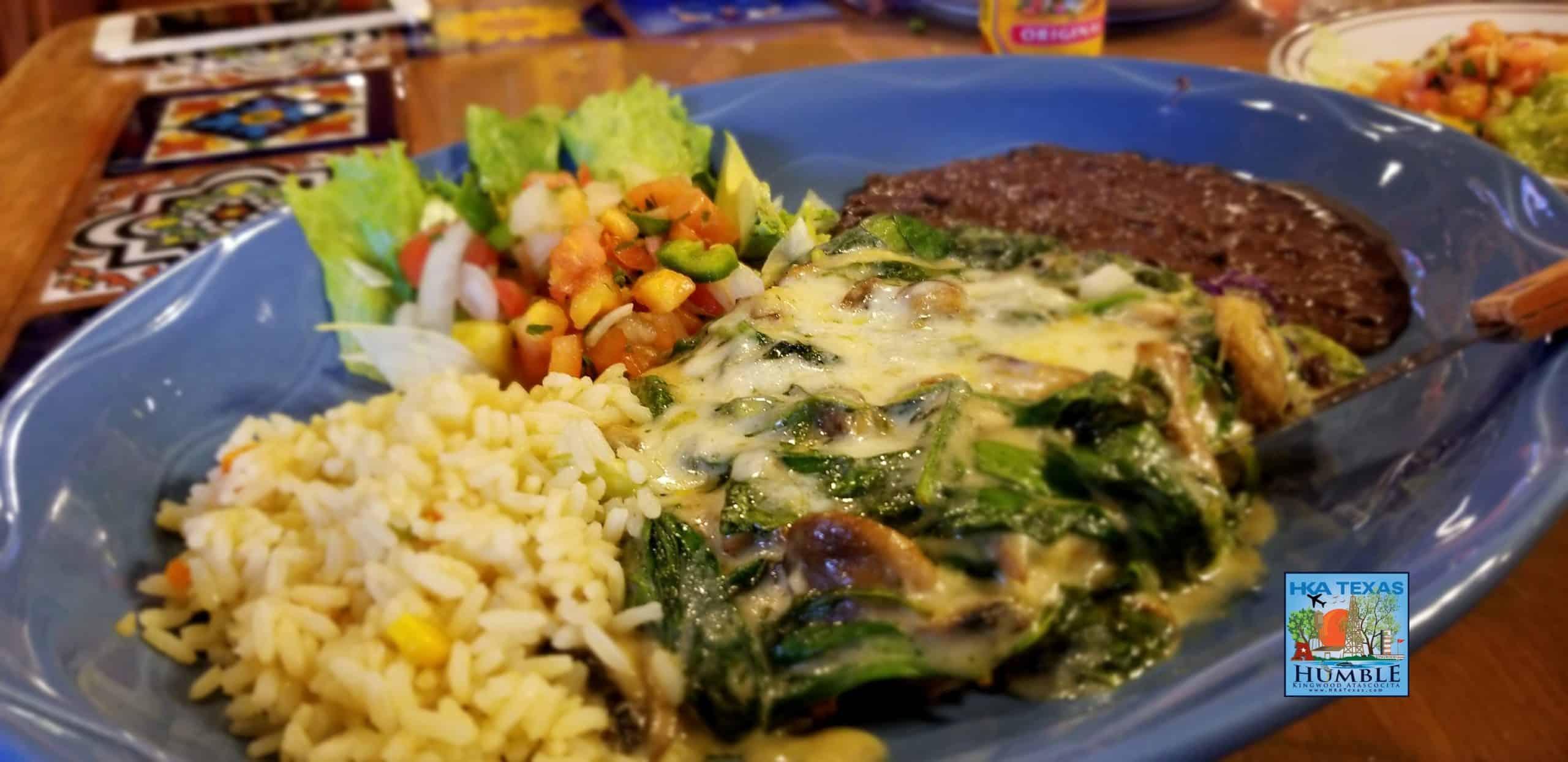 Mexican Food Kingwood Texas