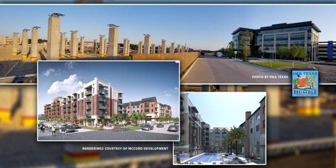 255 Assay Street Luxury Apartments
